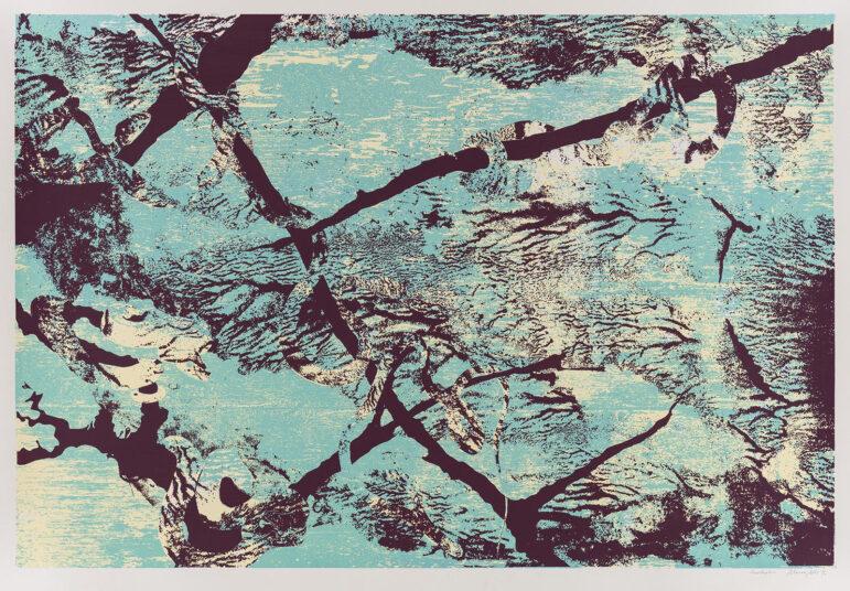 Acanthophis, Siebdruck, 100 x 70 cm, € 500,-